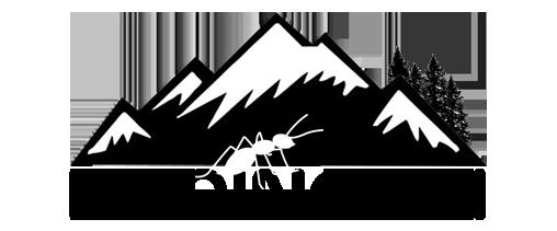 Karıncalı Kese